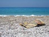 beach-16698__180